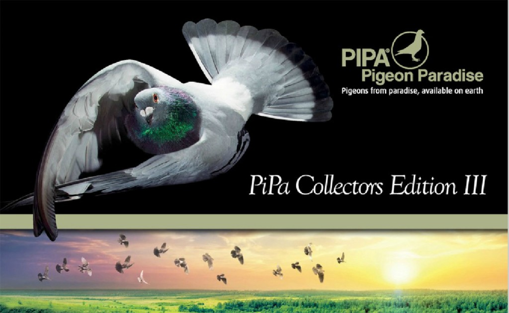 PiPA-Collectors-Edition-III--1